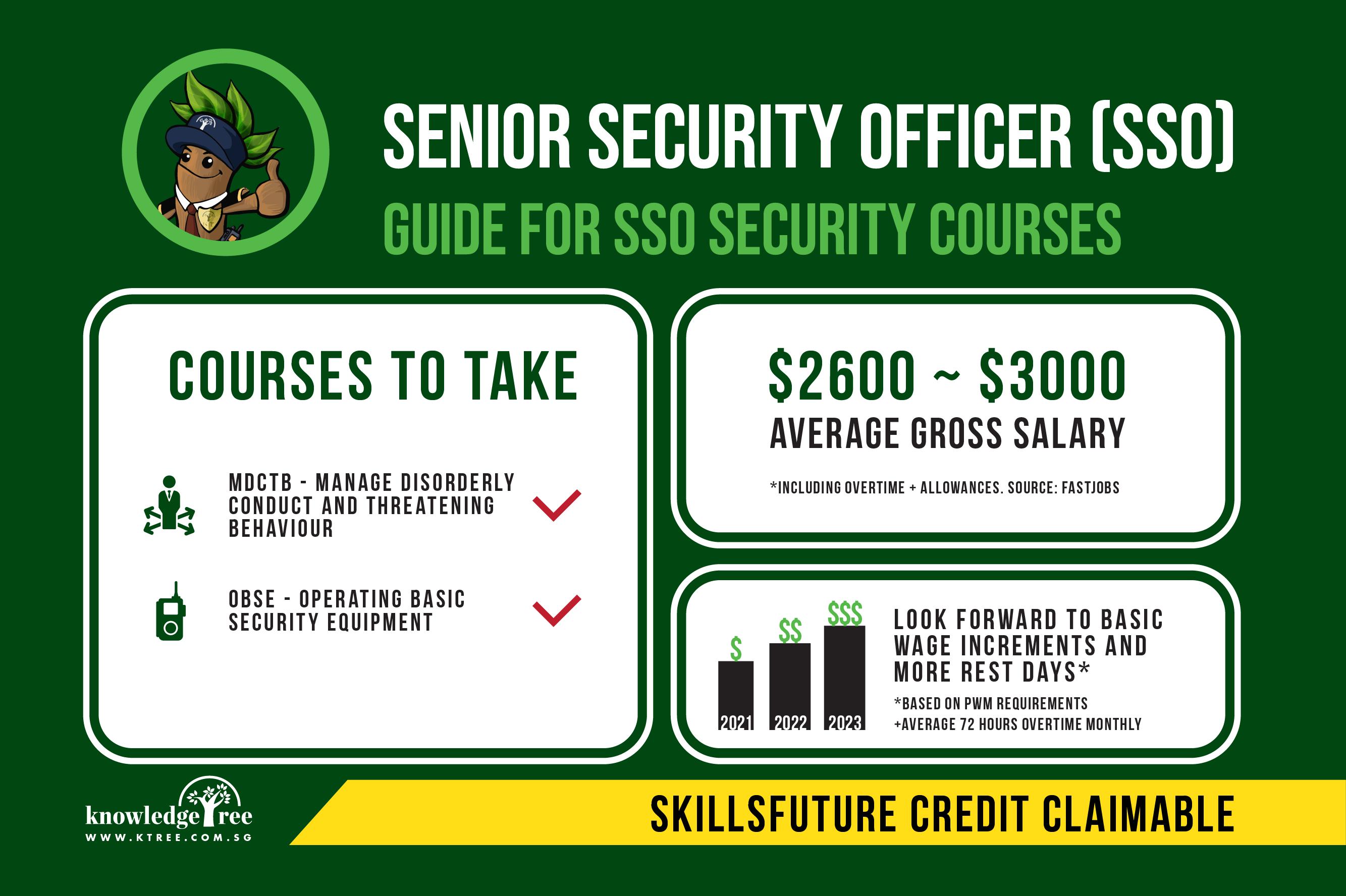 Senior Security Officer SSO