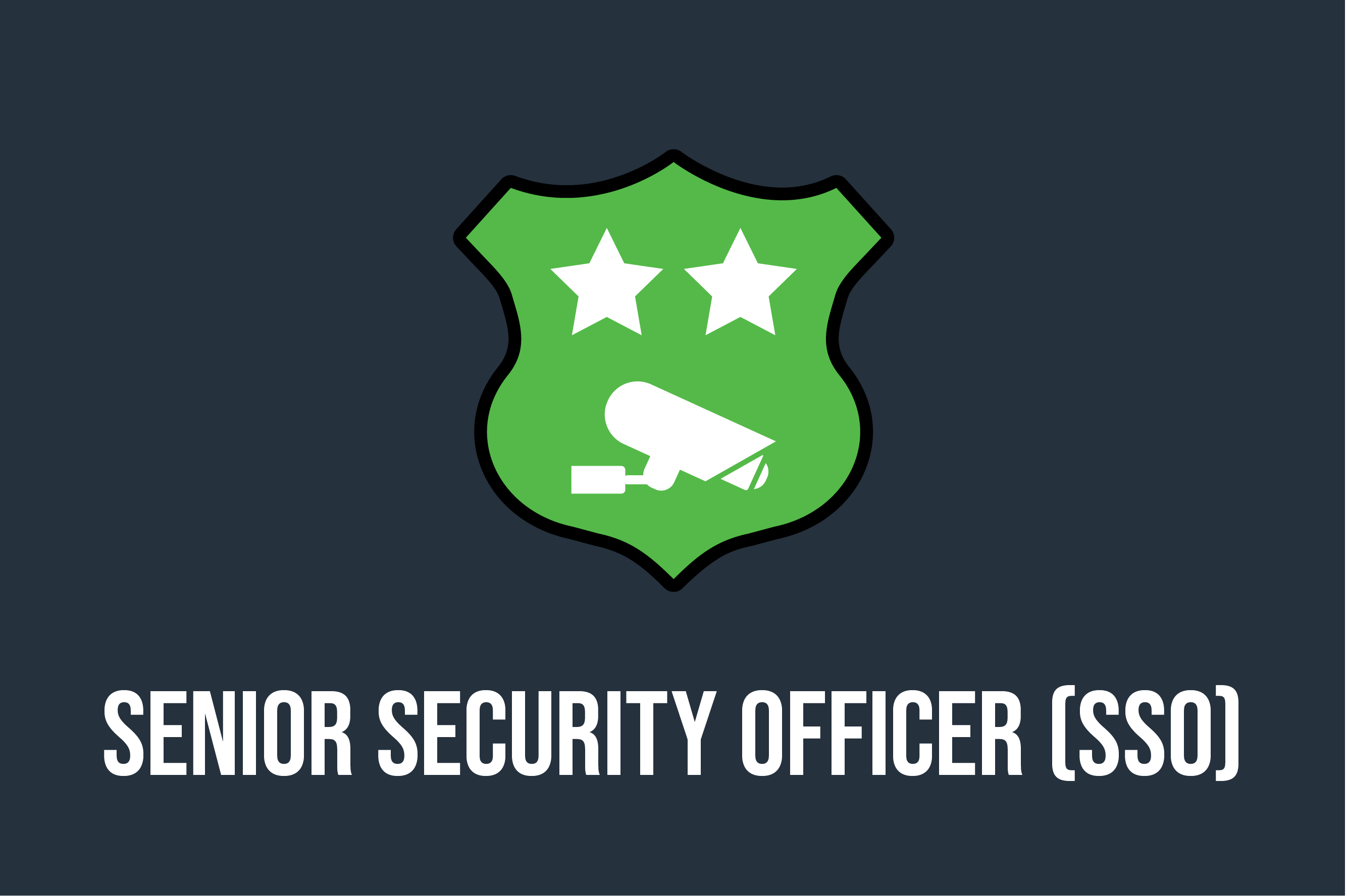 Senior Security Officer Course